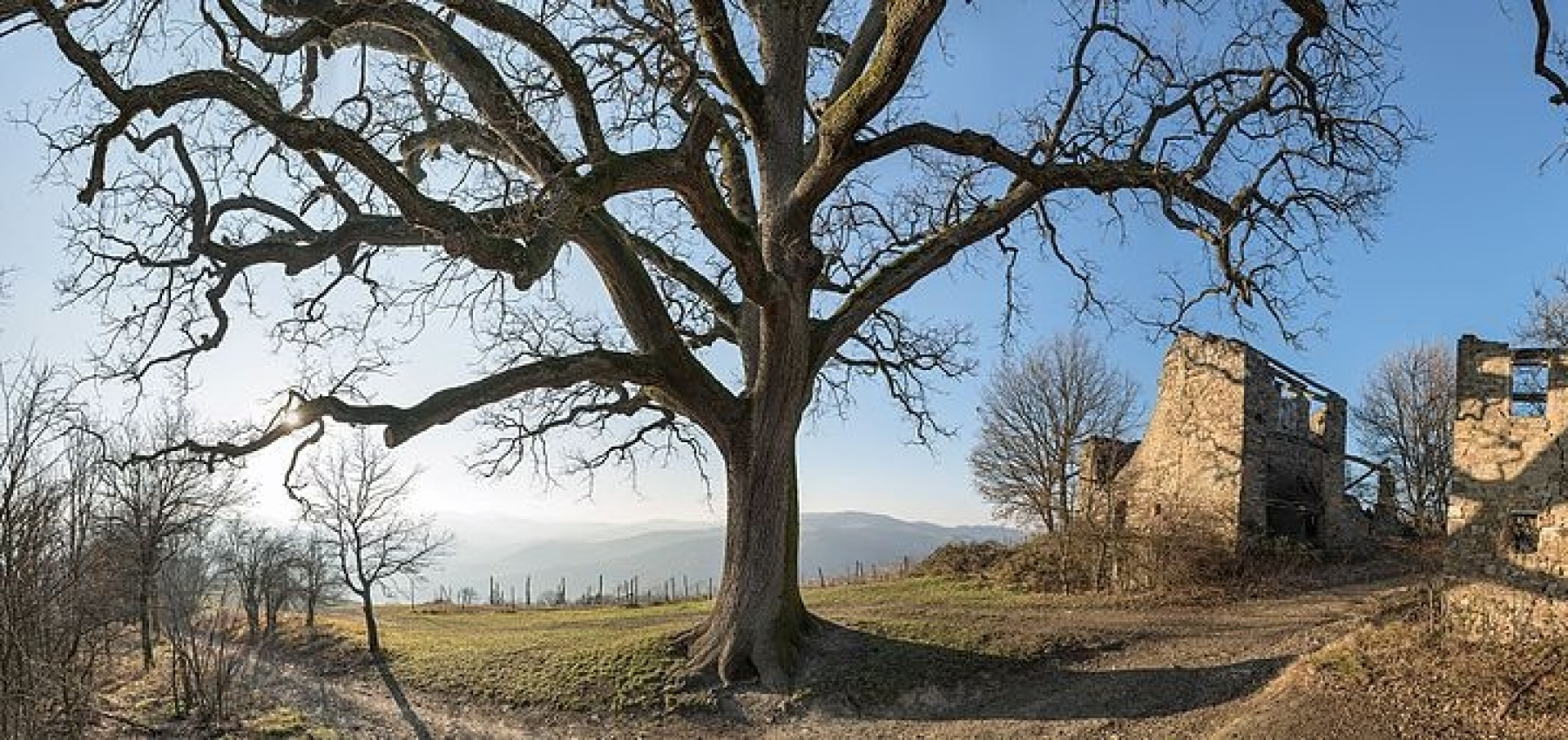 Nature trails in Scandiano